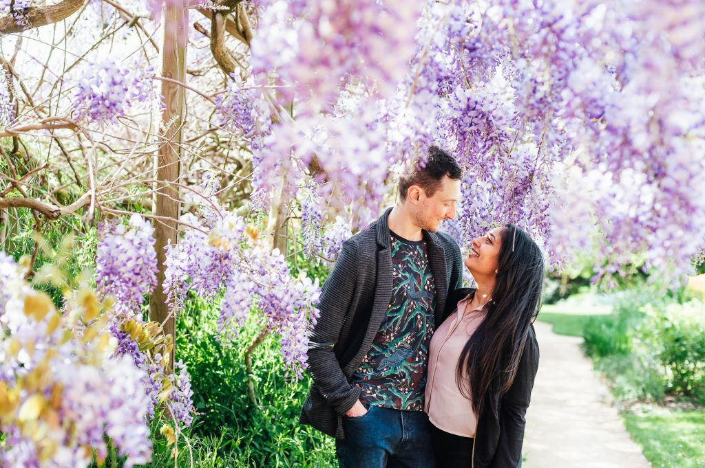 Couple stand together in gorgeous purple wisteria at Forty Hall Estate