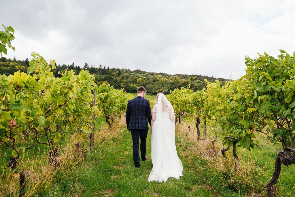 Wedding couple portraits amongst the vineyards