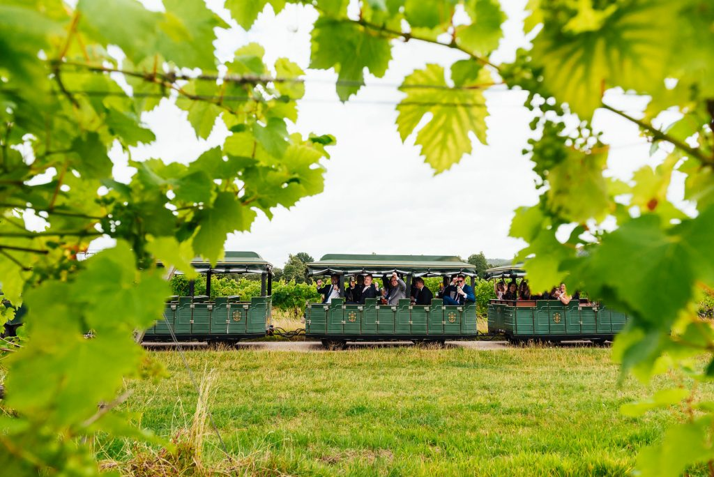 Guests pass by on Denbies Wine Cart