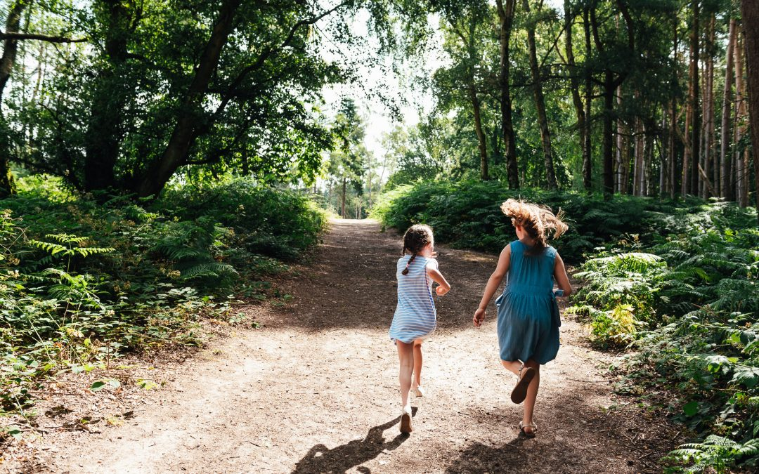 Surrey Family Photography – Summer Chantry Wood Family Shoot