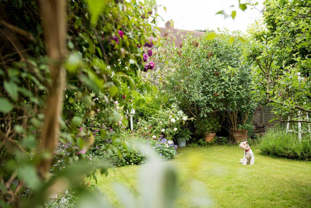 Garden exterior of childhood family home London