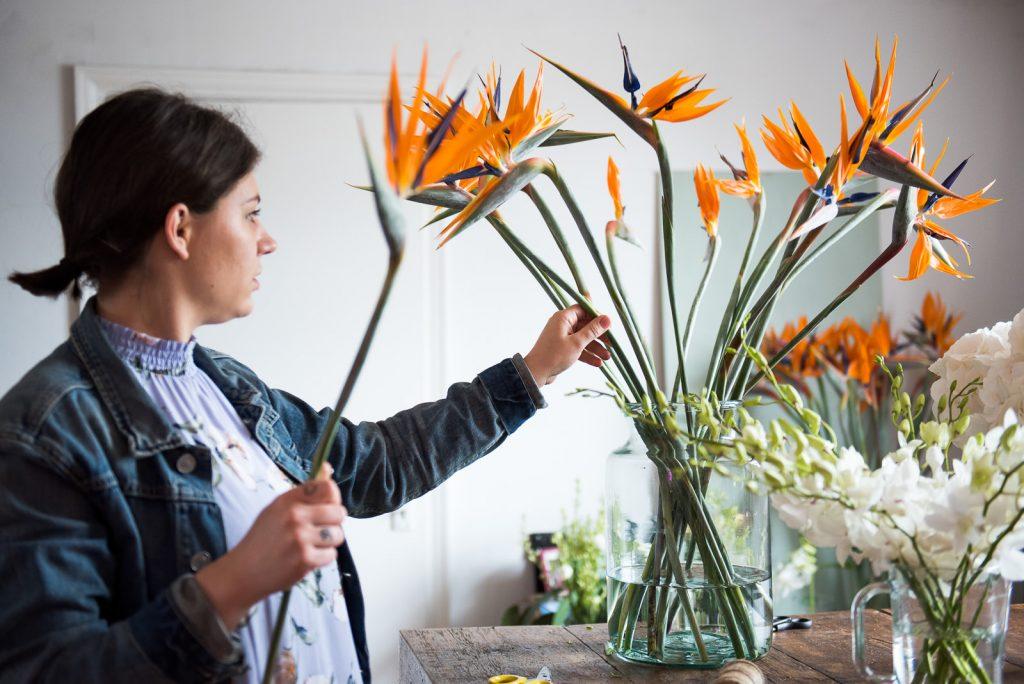 Exotic tropical plants in floristry studio
